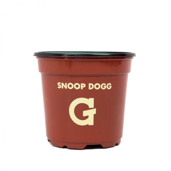 Snoop Dogg Bush G Pro Cup