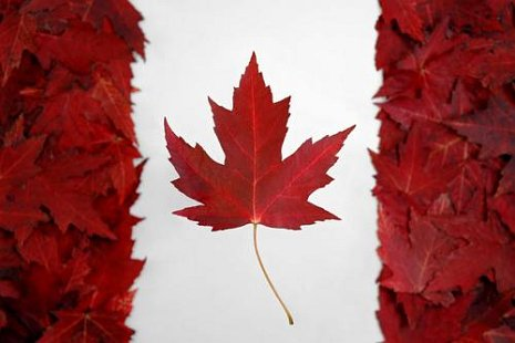 Canada's Cannabis Legalization